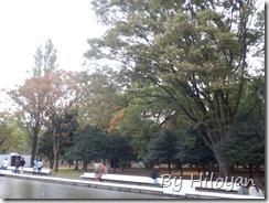 Pic_20131027_021