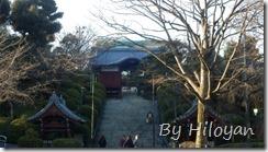Pic_20160211_015