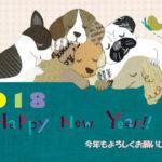 HappyNewYear 2018